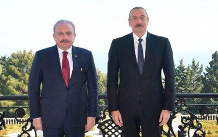 Prezident Şentopu qəbul etdi - Foto